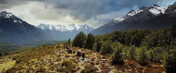 The Hobbit New Zealand