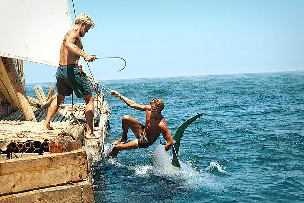kon tiki shark killing