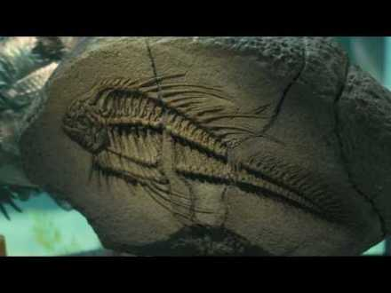 piranha-3d-christopher-lloyd-fossil