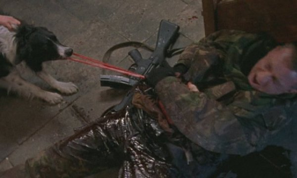 Dog Soldiers gore