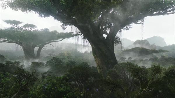 Hometree Avatar