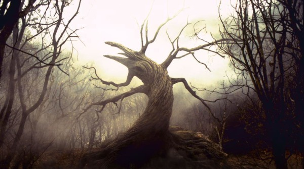 sleepy hollow tree