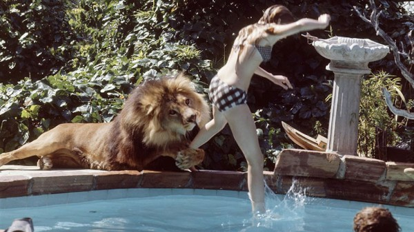 roar-melanie-griffith